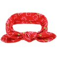 NHLI983406-Christmas-red