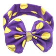 NHLI983461-Dark-purple