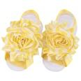 NHLI983592-yellow