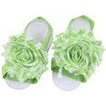 NHLI983593-green