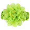 NHLI983805-green