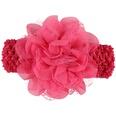 NHLI983810-Rose-red