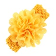NHLI983830-yellow