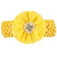 NHLI983991-yellow