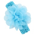 NHLI984008-blue