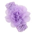 NHLI984009-purple