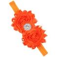 NHLI984062-Orange