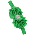 NHLI984068-Christmas-green