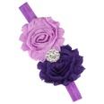 NHLI984070-Dark-purple-light-purple