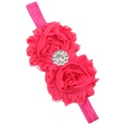NHLI984075-Rose-red