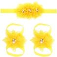 NHLI984445-yellow