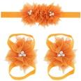 NHLI984455-Orange