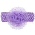 NHLI984510-purple