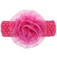 NHLI984513-Rose-red