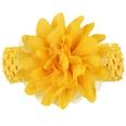 NHLI984648-yellow