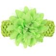 NHLI984649-green