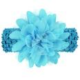 NHLI984650-blue
