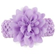 NHLI984651-purple