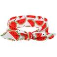 NHLI984685-watermelon