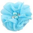 NHLI984730-blue