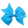 NHLI985209-In-blue