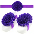 NHLI985553-Dark-purple