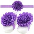 NHLI985554-Light-purple