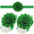 NHLI985555-Christmas-green