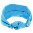 NHLI985706-blue