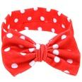 NHLI985910-Big-red-and-white-dots