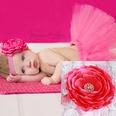 NHLI986008-Rose-red