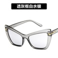 NHKD989256-Transparent-gray-frame-white-mercury