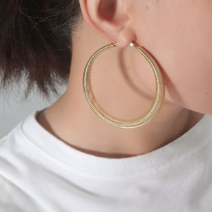 Korea Fashion New Alloy Geometric Simple Retro Exaggerated  Earrings wholesale nihaojewely NHKQ240474's discount tags