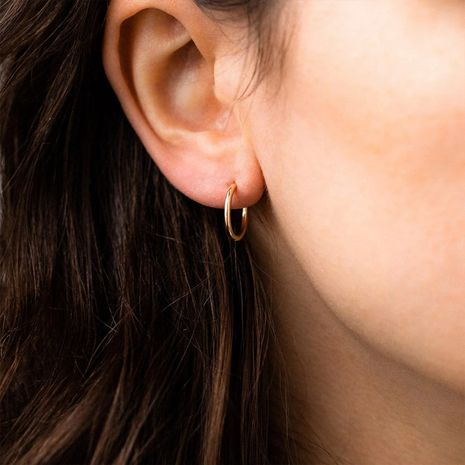 fashion simple gold-plated 316L titanium steel earrings wholesale nihaojewelry NHTF240661's discount tags