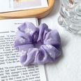 NHOF1023790-Small-flowers-purple