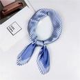 NHMN1026218-21-times-striped-blue-60cm