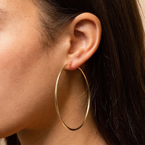 Fashion Stainless Steel Hot Selling Simple Glossy Big Circle Earrings for women NHTF241996's discount tags