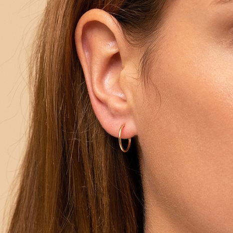 Hot selling simple fashion stainless steel classic geometric earrings for women wholesale NHTF242006's discount tags