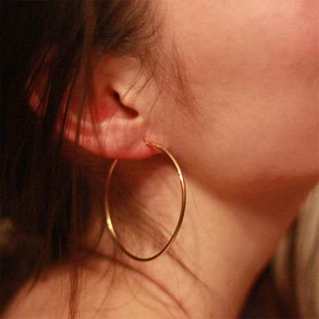 Fashion geometric big circle stainless steel ear hoop earrings for women wholesale NHTF242024's discount tags