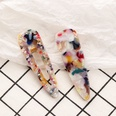 NHNU893579-A-pair-of-mixed-color-hair-clips