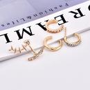 Korean new fashion womens full diamond backhanging fish bone alloy earrings set NHAJ251753