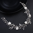NHHS1058587-Silver