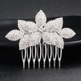 NHHS1058700-Silver