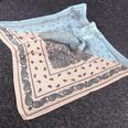 NHCM1068261-Small-square-scarf-cashew-powder-blue-