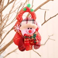 NHMV1115639-snowman