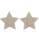 fashion metal flashing diamond fivepointed star earrings wholesale  NHSC256886