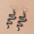 NHAI1119452-snake
