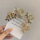Korean flower hair catch girl simple and cute bangs clip hairpin wholesale NHOF258500