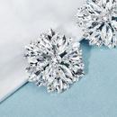 Hot selling fashion flower glass rhinestone flower shoe buckle bride wedding dress accessories NHHS259860