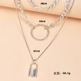 NHAJ1075893-Silver